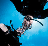 Scuba Dive and Watersports